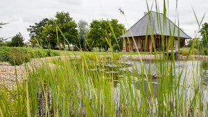 Vörös Kastély tó és fürdőház